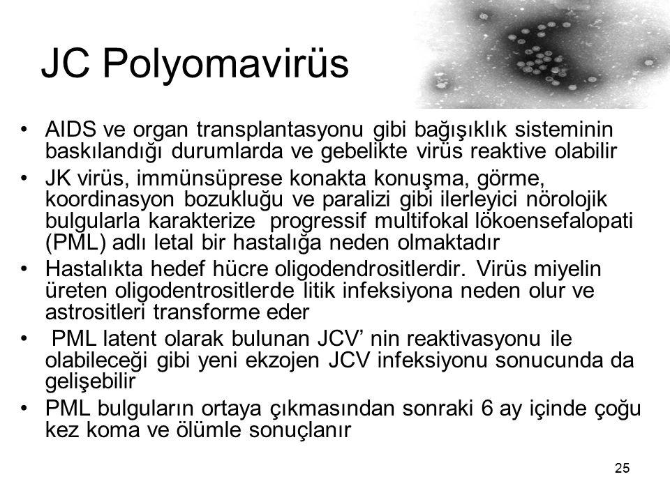 JC Polyomavirüs AIDS ve organ transplantasyonu gibi bağışıklık sisteminin baskılandığı durumlarda ve gebelikte virüs reaktive olabilir.