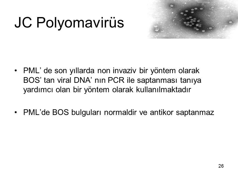 JC Polyomavirüs