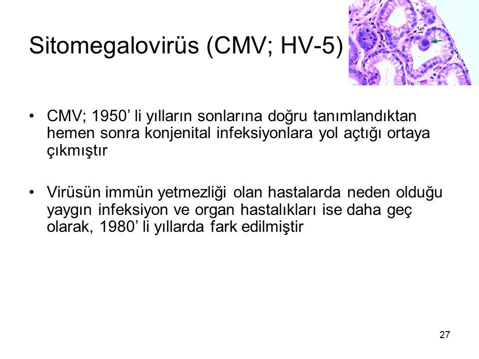 Sitomegalovirüs (CMV; HV-5)