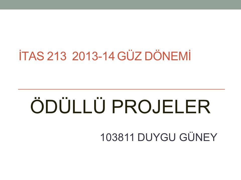 ÖDÜLLÜ PROJELER 103811 DUYGU GÜNEY