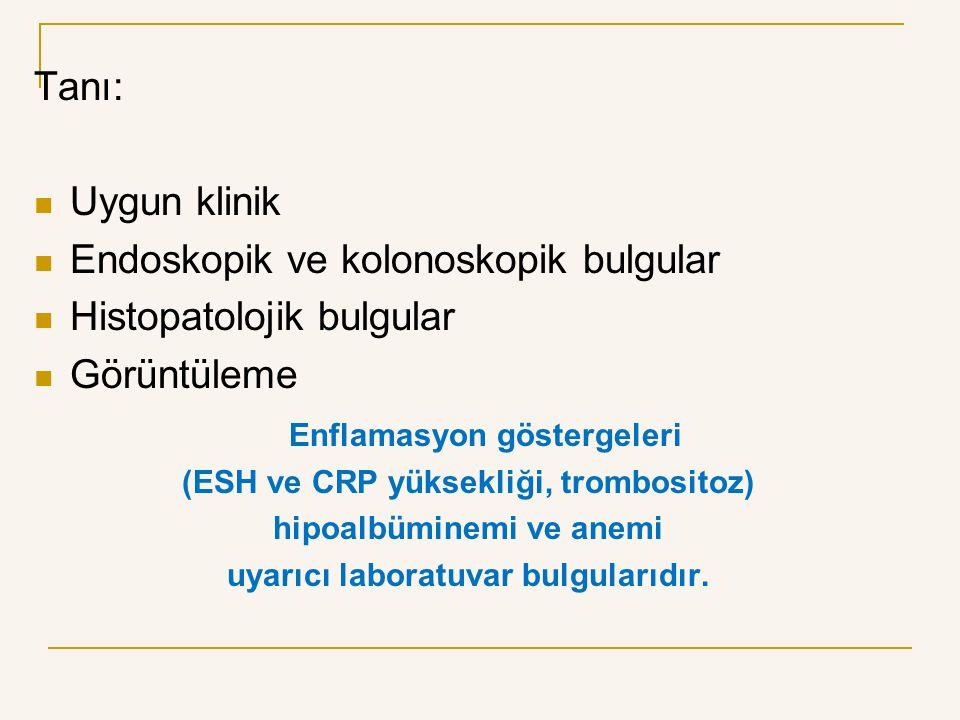 Endoskopik ve kolonoskopik bulgular Histopatolojik bulgular