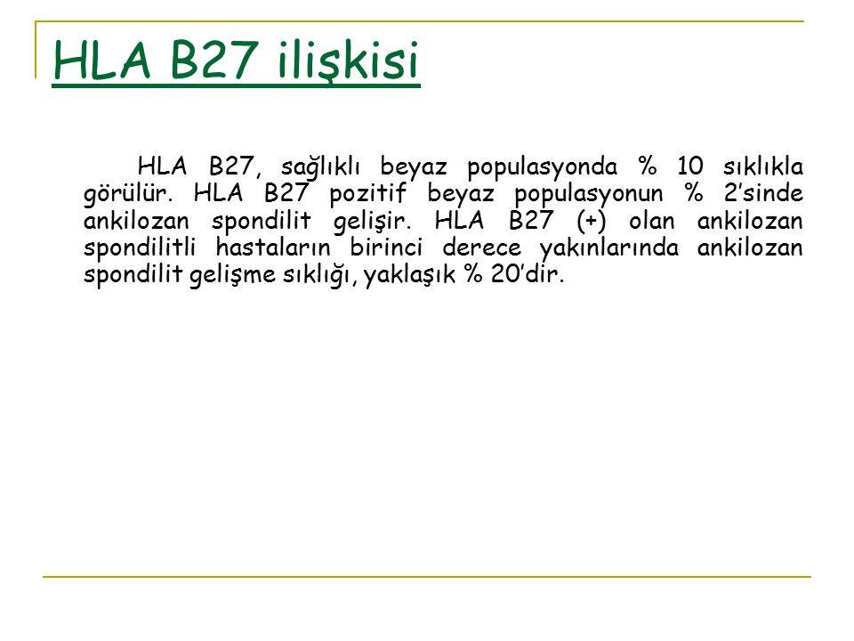 HLA B27 ilişkisi