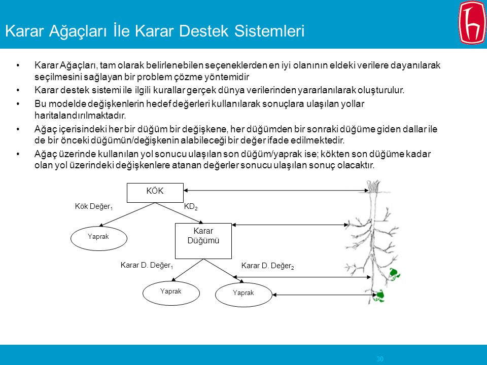 Karar Ağaçları İle Karar Destek Sistemleri