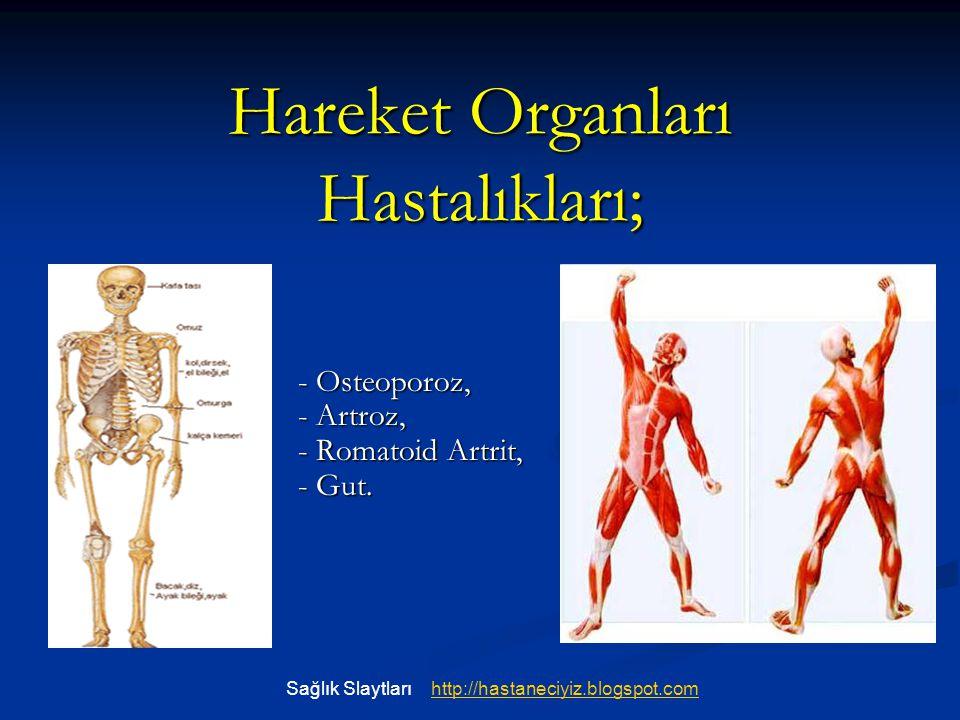Hareket Organları Hastalıkları;
