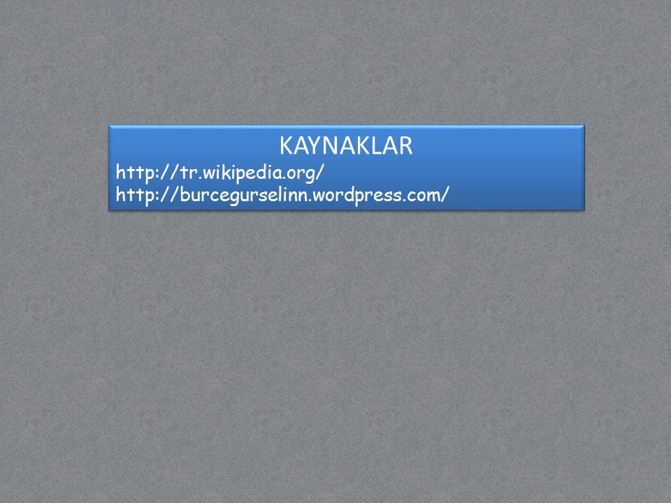 KAYNAKLAR http://tr.wikipedia.org/