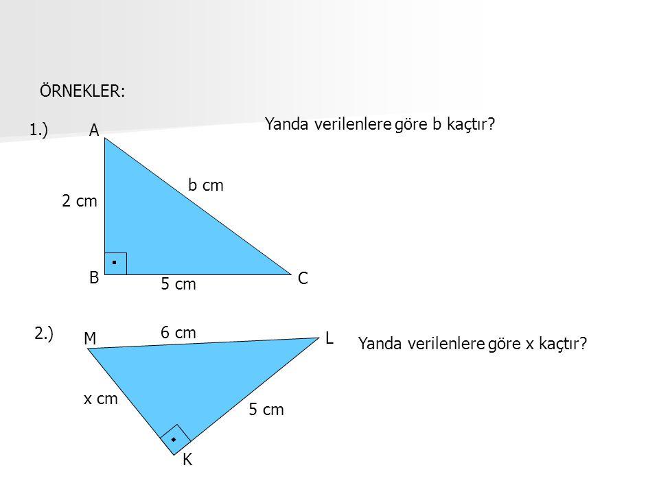 ÖRNEKLER: Yanda verilenlere göre b kaçtır 1.) A. b cm. 2 cm. B. C. 5 cm. 2.) 6 cm. M. L.