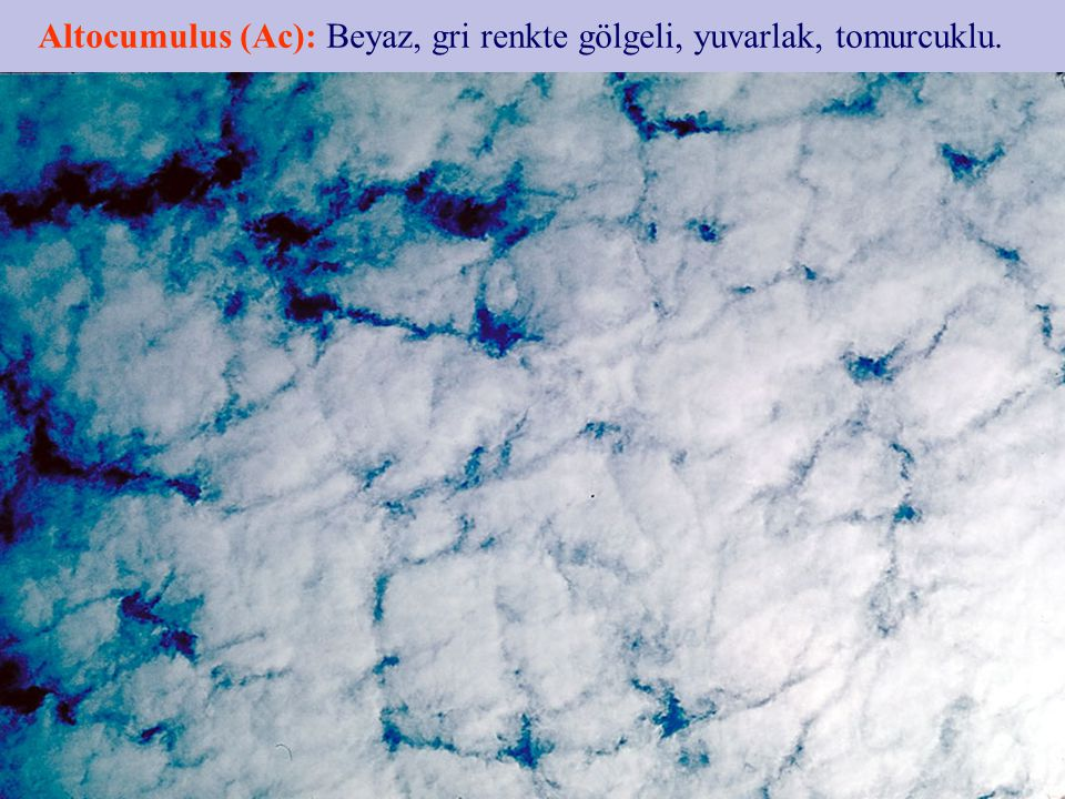 Altocumulus (Ac): Beyaz, gri renkte gölgeli, yuvarlak, tomurcuklu.