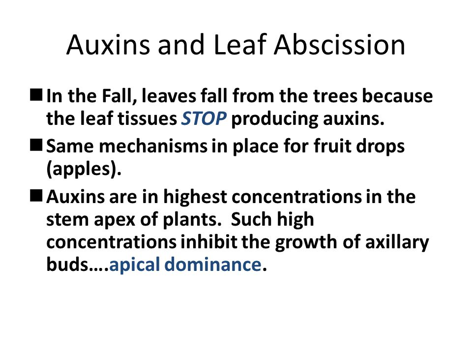 Auxins and Leaf Abscission