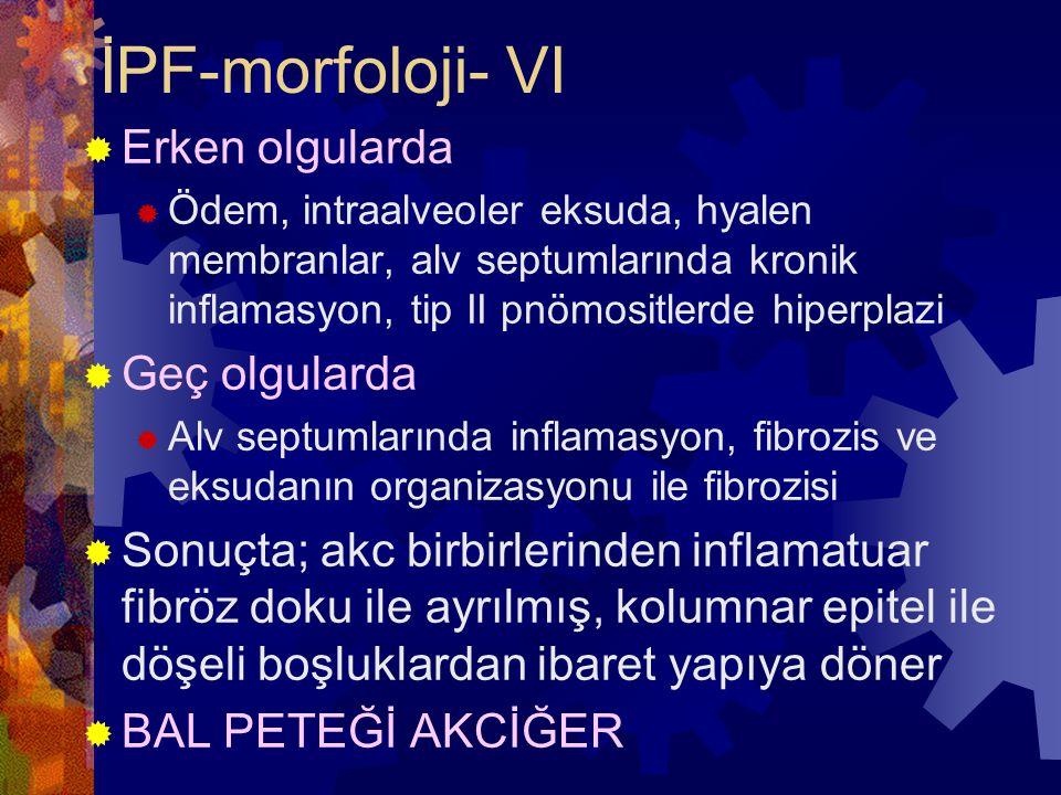 İPF-morfoloji- VI Erken olgularda Geç olgularda