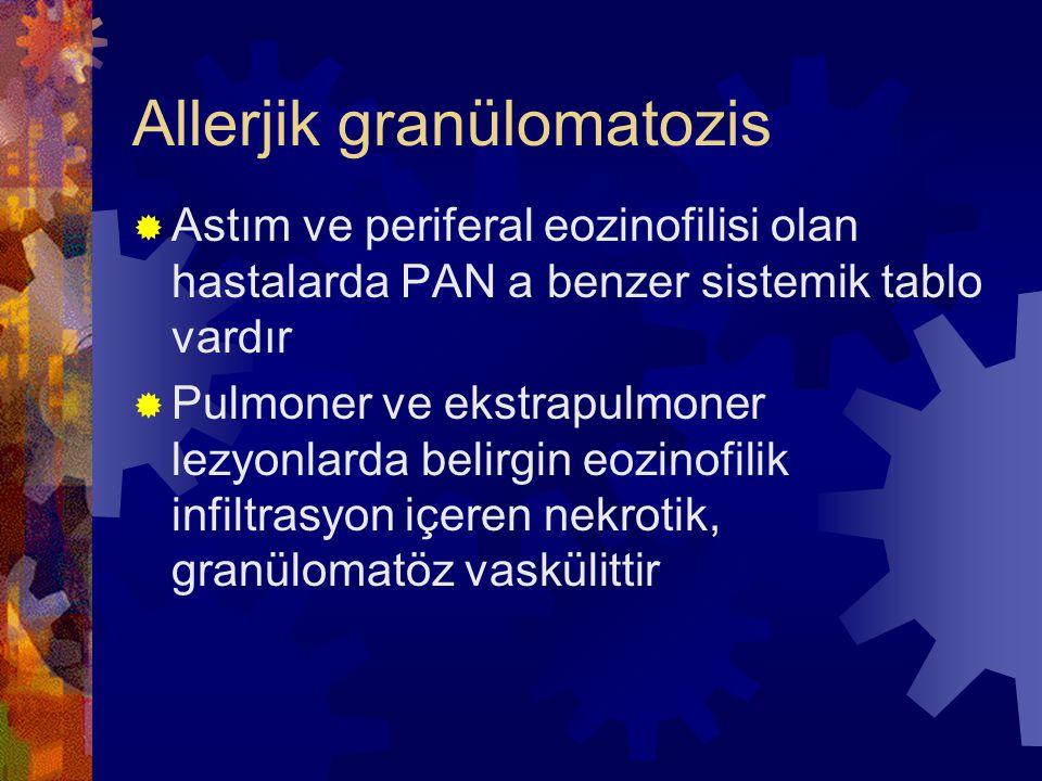Allerjik granülomatozis