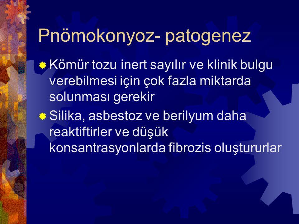 Pnömokonyoz- patogenez