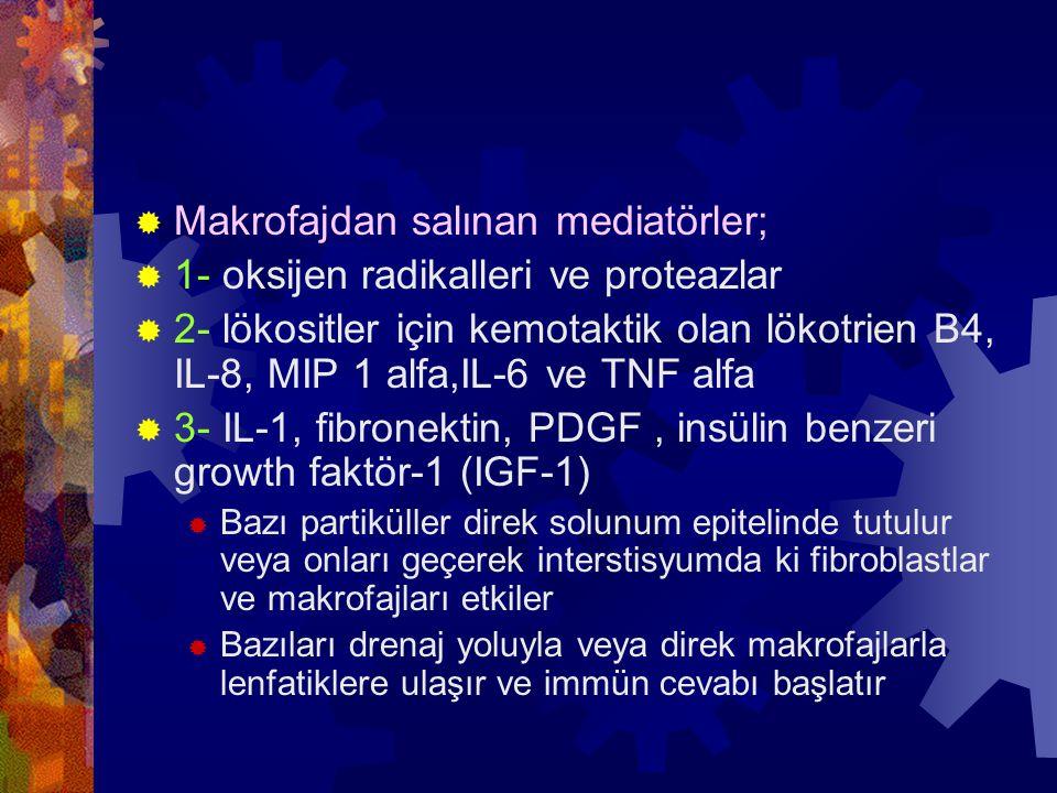 Makrofajdan salınan mediatörler; 1- oksijen radikalleri ve proteazlar