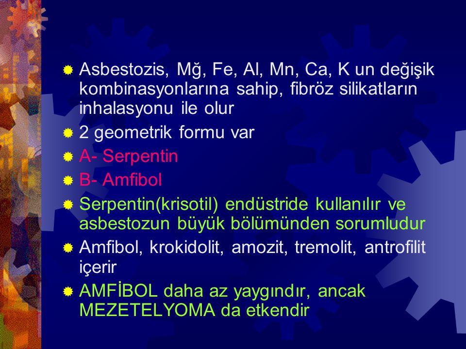 Asbestozis, Mğ, Fe, Al, Mn, Ca, K un değişik kombinasyonlarına sahip, fibröz silikatların inhalasyonu ile olur