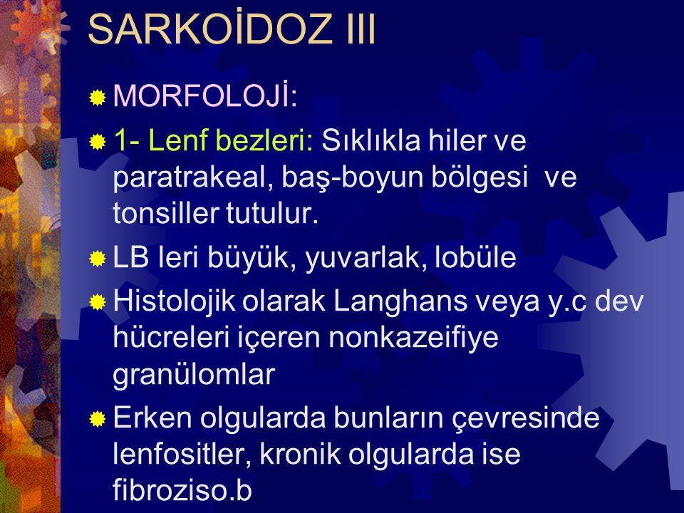SARKOİDOZ III MORFOLOJİ:
