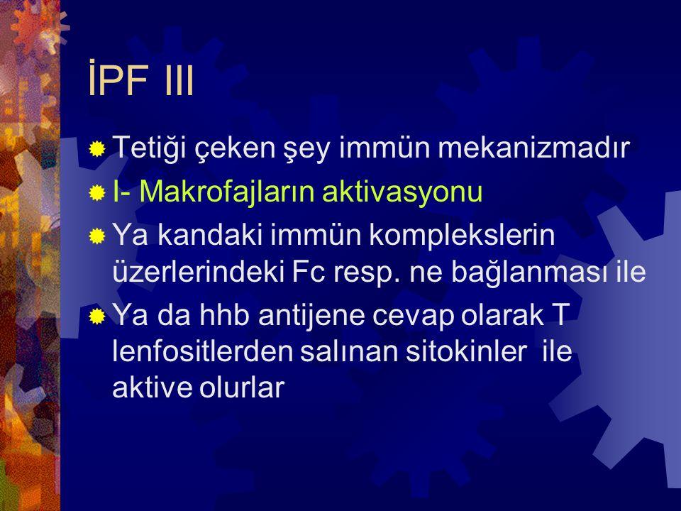 İPF III Tetiği çeken şey immün mekanizmadır