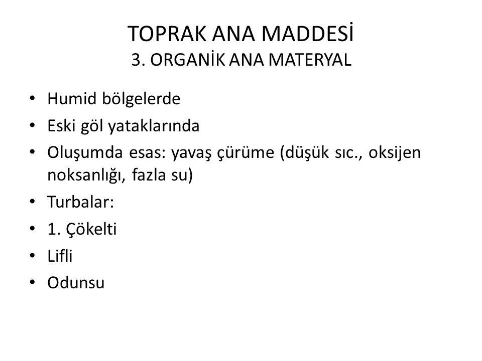 TOPRAK ANA MADDESİ 3. ORGANİK ANA MATERYAL