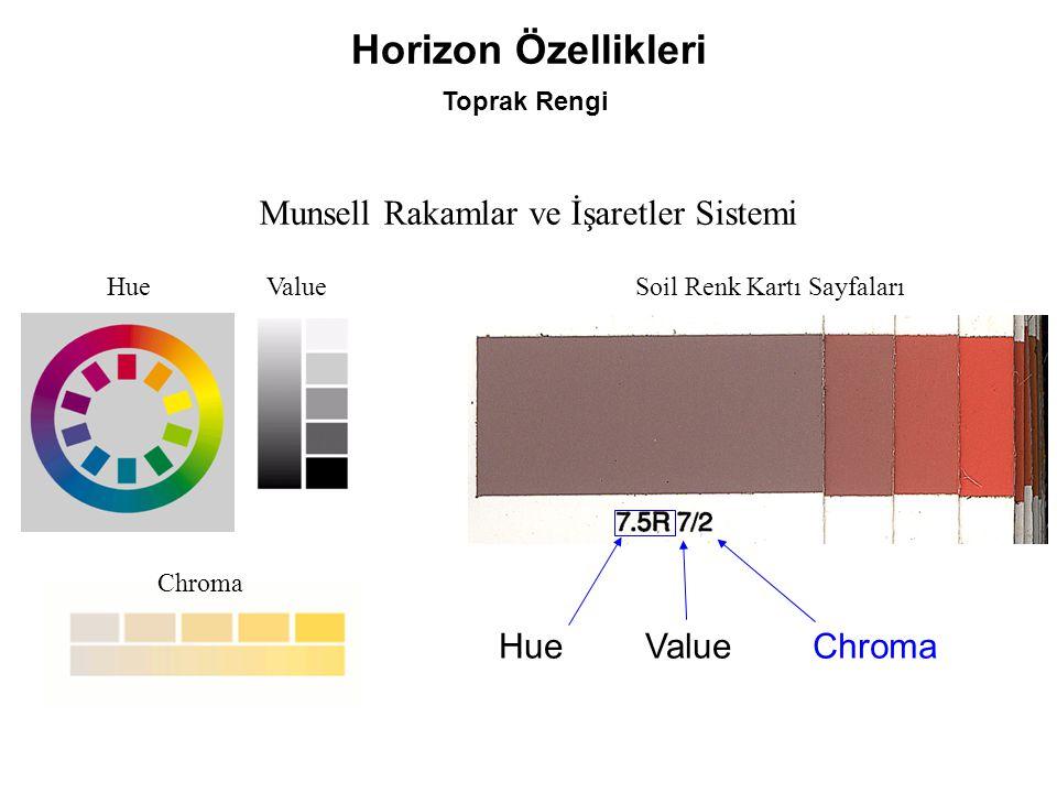 Horizon Özellikleri Munsell Rakamlar ve İşaretler Sistemi Hue Value