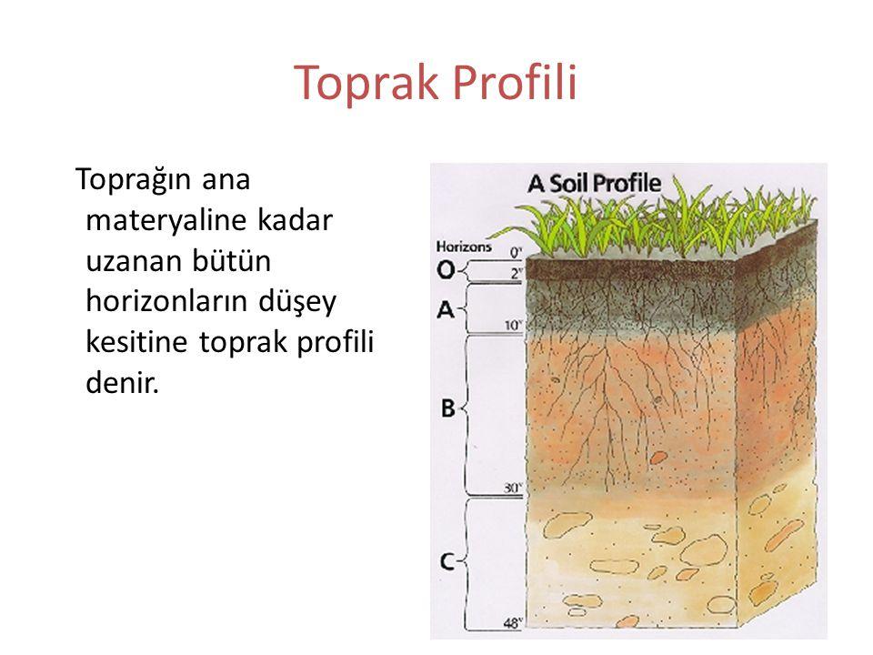 Toprak Profili Toprağın ana materyaline kadar uzanan bütün horizonların düşey kesitine toprak profili denir.