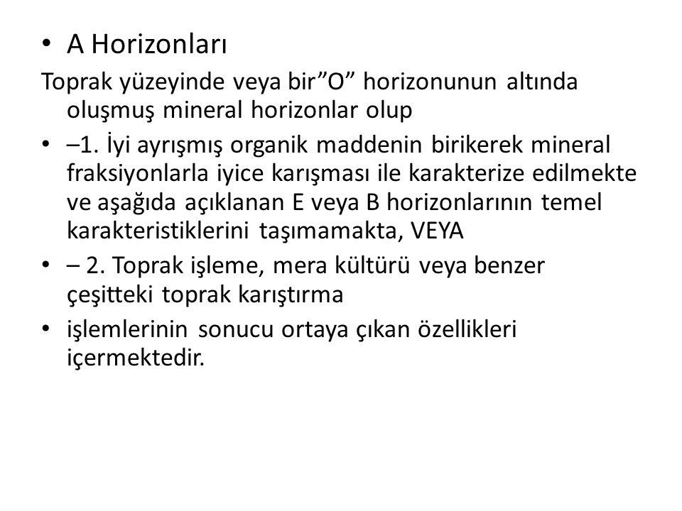 A Horizonları Toprak yüzeyinde veya bir O horizonunun altında oluşmuş mineral horizonlar olup.