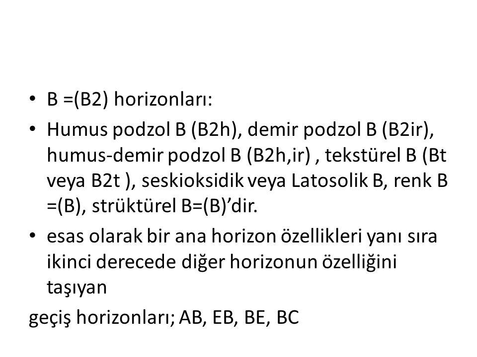 B =(B2) horizonları: