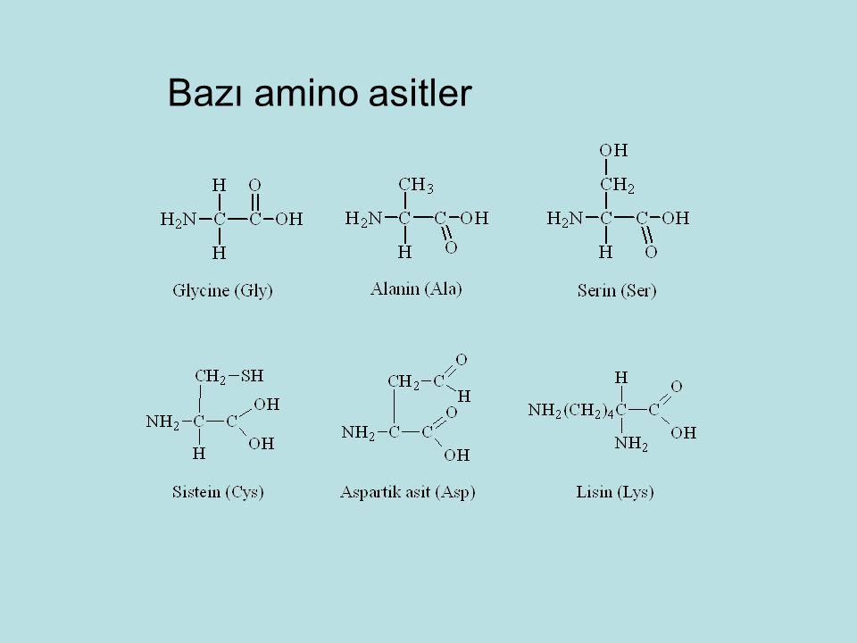 Bazı amino asitler