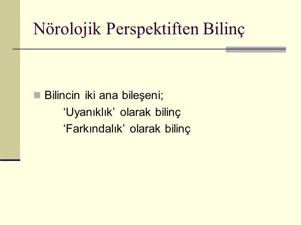 Nörolojik Perspektiften Bilinç