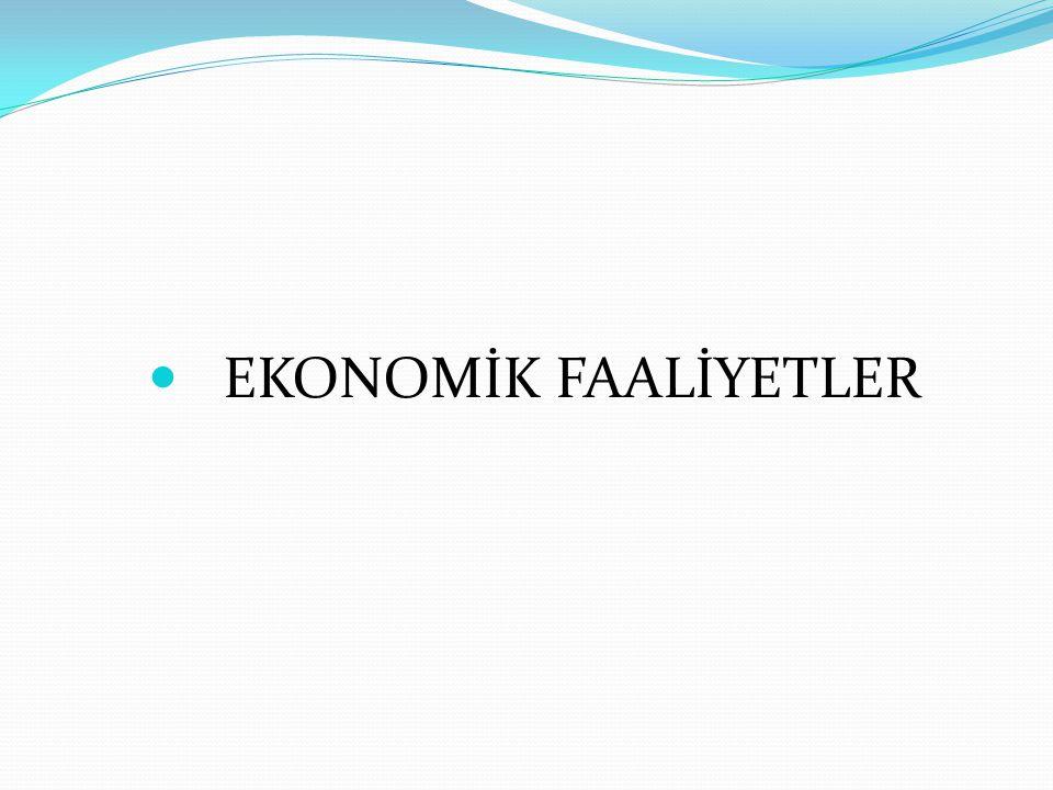 EKONOMİK FAALİYETLER