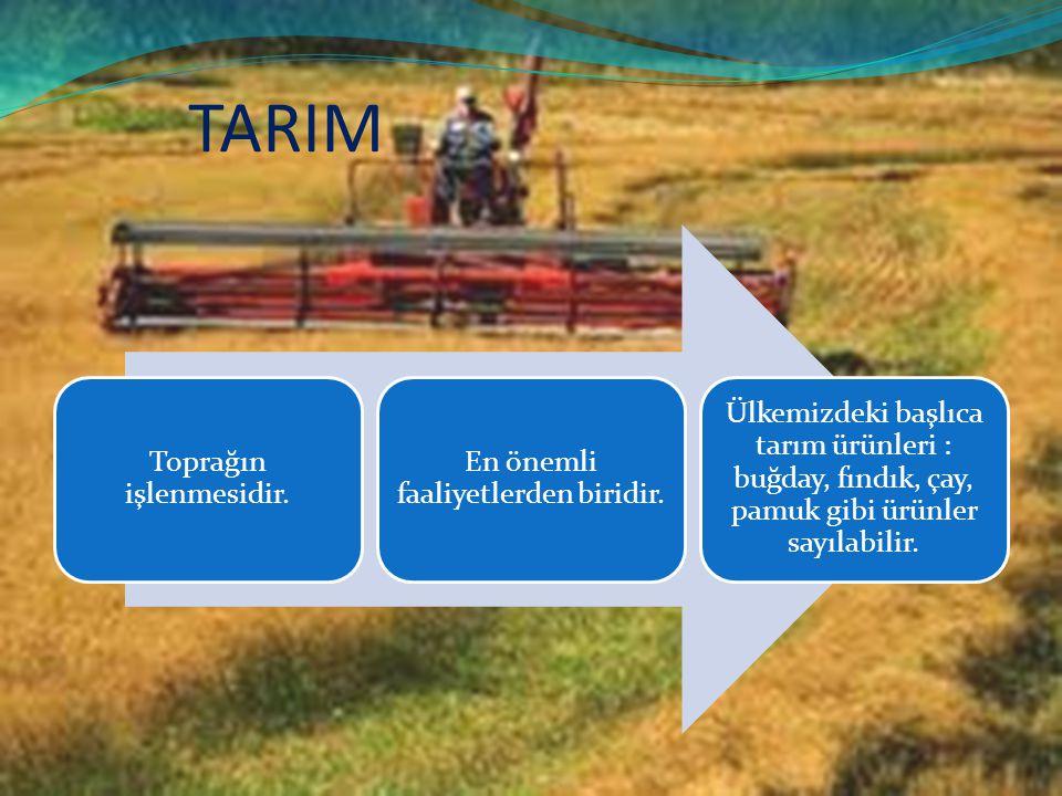 TARIM Toprağın işlenmesidir. En önemli faaliyetlerden biridir.