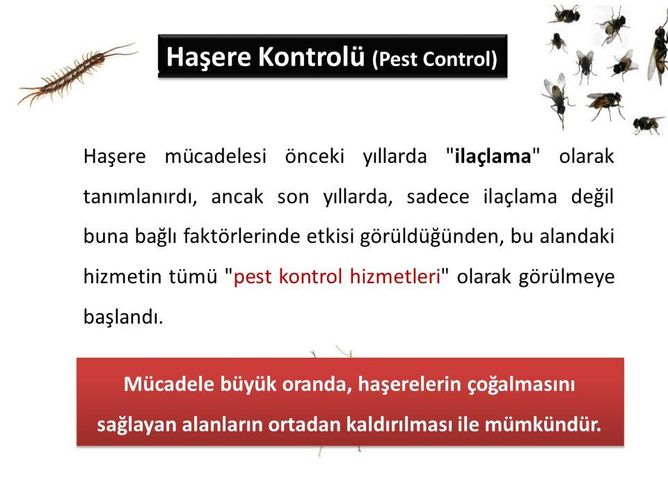 Haşere Kontrolü (Pest Control)
