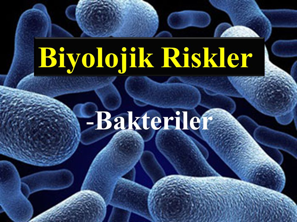 Biyolojik Riskler Bakteriler