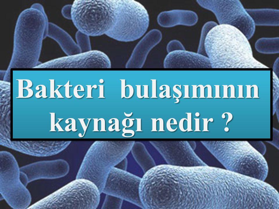 Bakteri bulaşımının kaynağı nedir