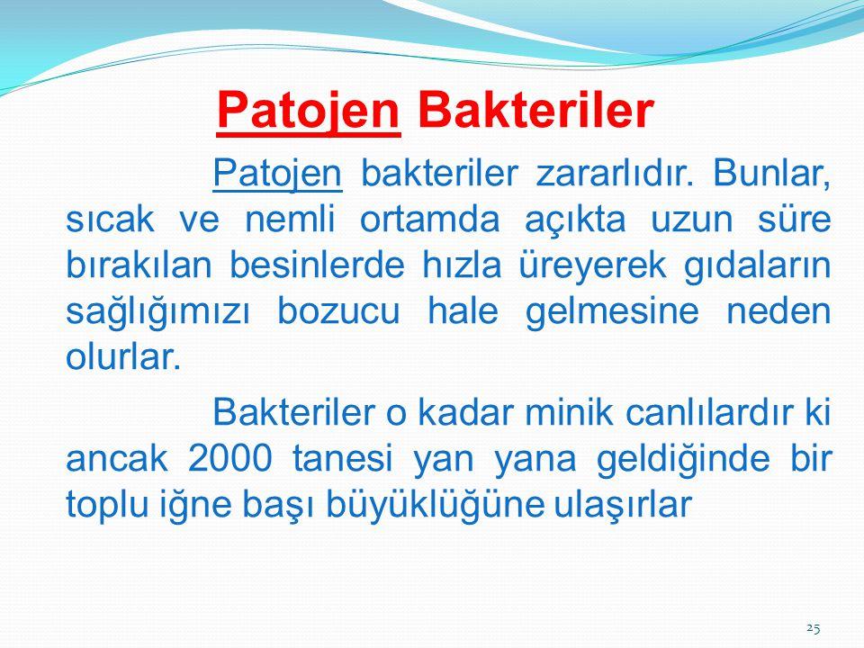 Patojen Bakteriler