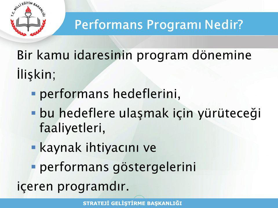 Performans Programı Nedir
