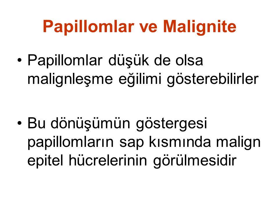 Papillomlar ve Malignite