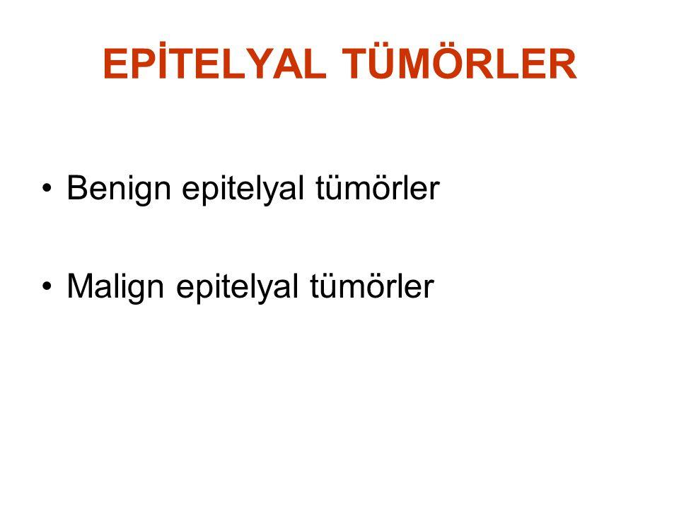 EPİTELYAL TÜMÖRLER Benign epitelyal tümörler Malign epitelyal tümörler