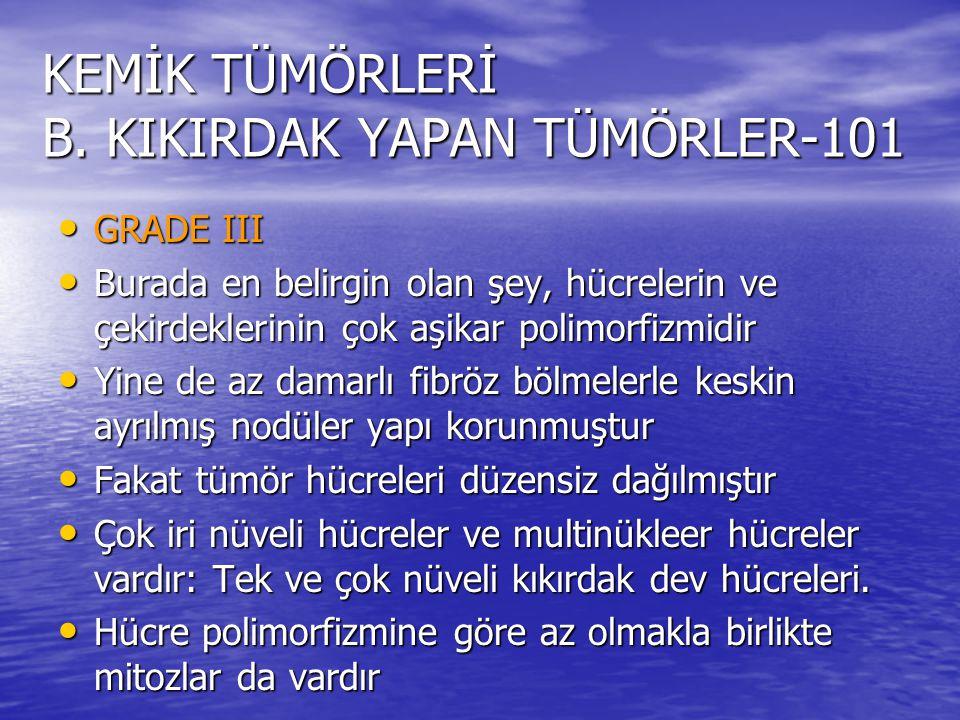 KEMİK TÜMÖRLERİ B. KIKIRDAK YAPAN TÜMÖRLER-101