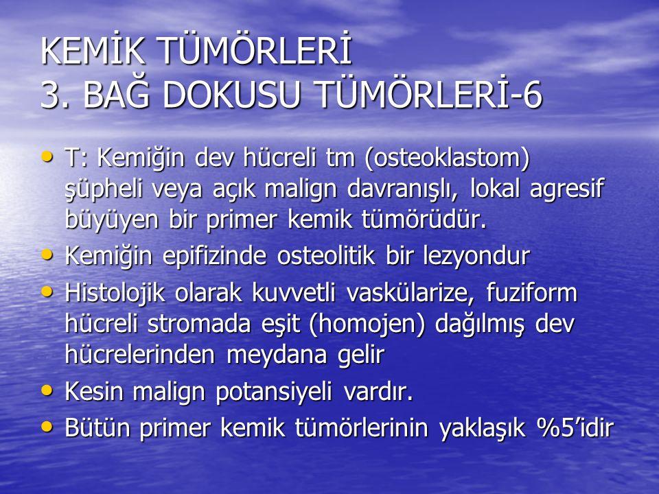 KEMİK TÜMÖRLERİ 3. BAĞ DOKUSU TÜMÖRLERİ-6