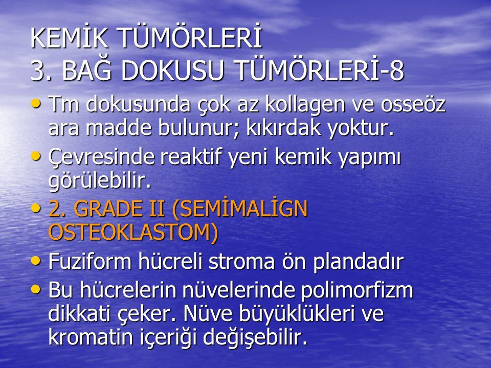 KEMİK TÜMÖRLERİ 3. BAĞ DOKUSU TÜMÖRLERİ-8