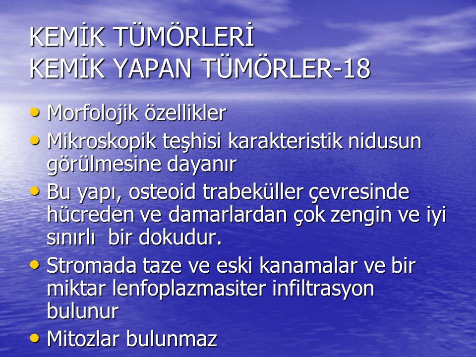KEMİK TÜMÖRLERİ KEMİK YAPAN TÜMÖRLER-18
