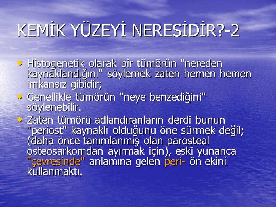 KEMİK YÜZEYİ NERESİDİR -2