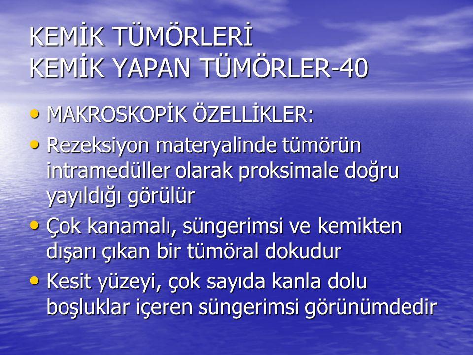 KEMİK TÜMÖRLERİ KEMİK YAPAN TÜMÖRLER-40