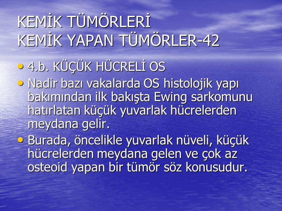 KEMİK TÜMÖRLERİ KEMİK YAPAN TÜMÖRLER-42