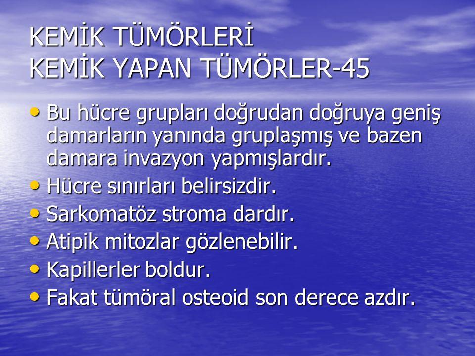 KEMİK TÜMÖRLERİ KEMİK YAPAN TÜMÖRLER-45
