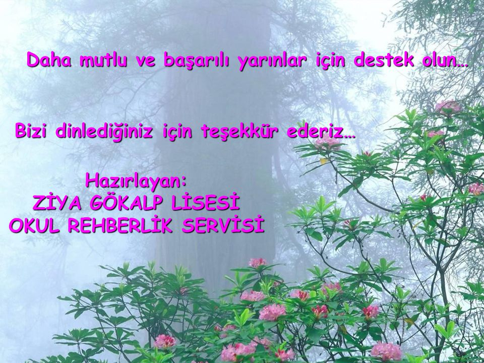 OKUL REHBERLİK SERVİSİ
