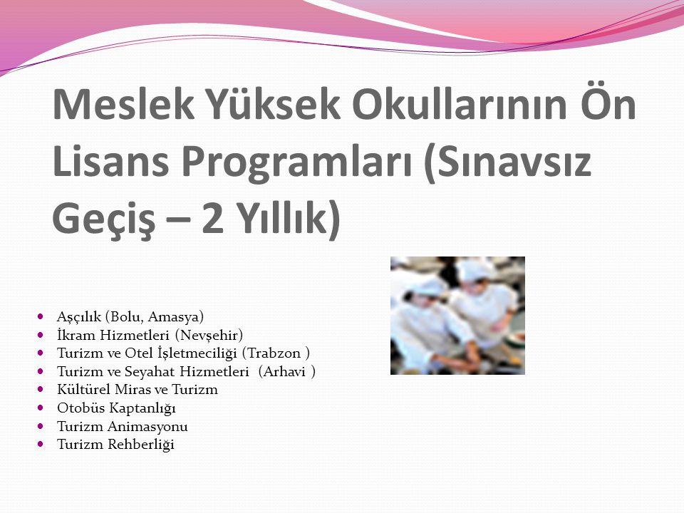 Meslek Yüksek Okullarının Ön Lisans Programları (Sınavsız Geçiş – 2 Yıllık)
