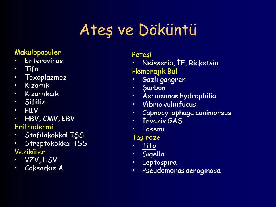 Ateş ve Döküntü Makülopapüler Peteşi Enterovirus