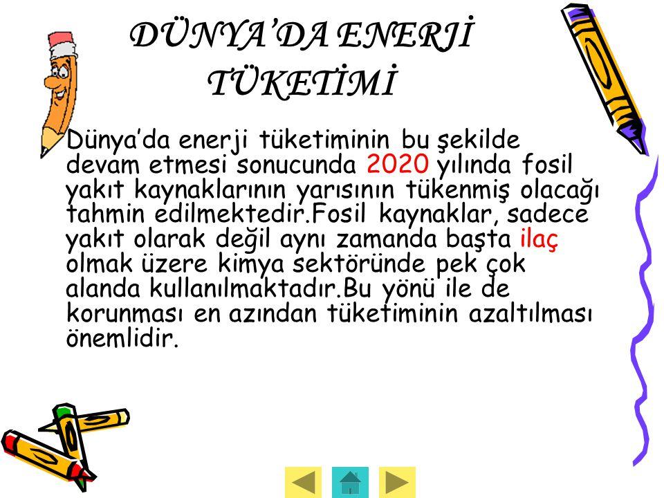 DÜNYA'DA ENERJİ TÜKETİMİ