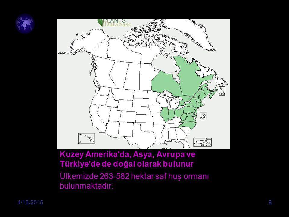 Kuzey Amerika da, Asya, Avrupa ve Türkiye de de doğal olarak bulunur
