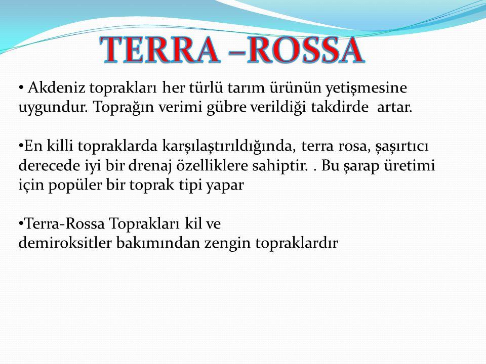 TERRA –ROSSA Akdeniz toprakları her türlü tarım ürünün yetişmesine uygundur. Toprağın verimi gübre verildiği takdirde artar.
