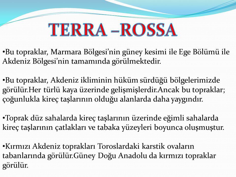 TERRA –ROSSA Bu topraklar, Marmara Bölgesi'nin güney kesimi ile Ege Bölümü ile Akdeniz Bölgesi'nin tamamında görülmektedir.